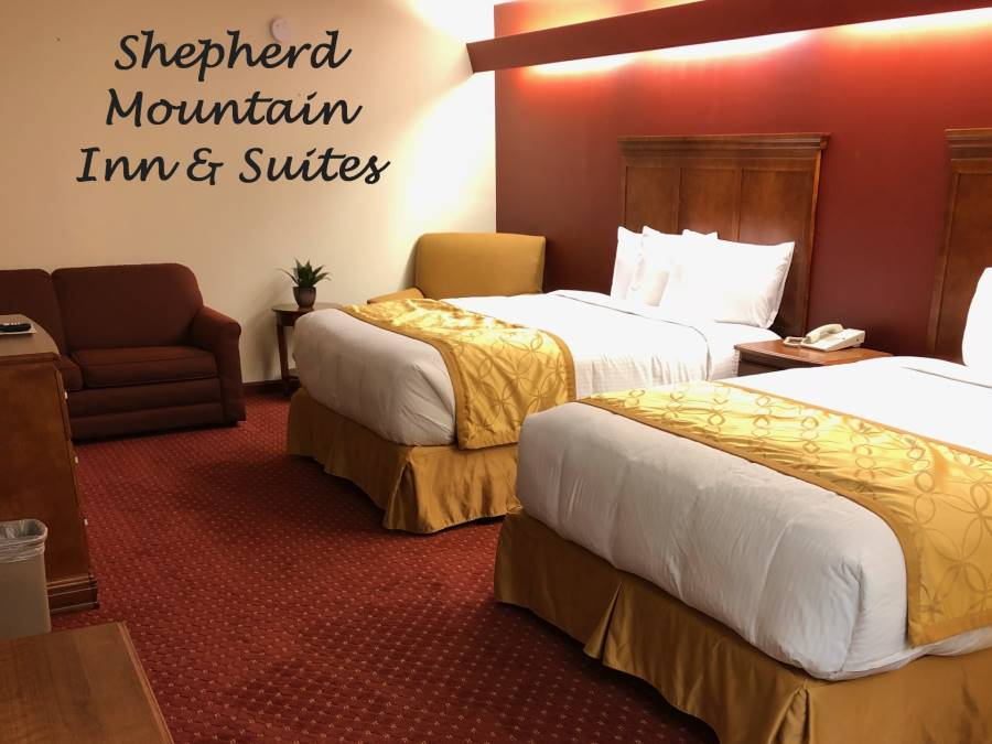 Shepherd Main Logo room